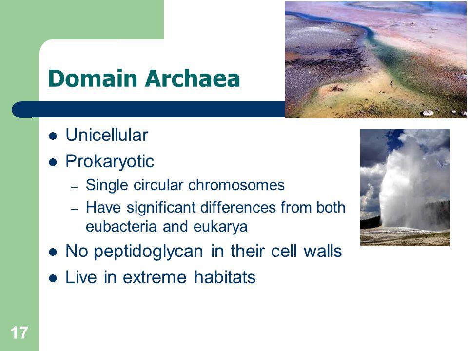 Domain Archaea Unicellular Prokaryotic