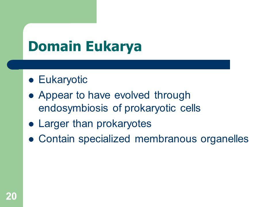 Domain Eukarya Eukaryotic