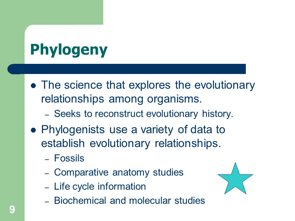 Phylogeny The science that explores the evolutionary relationships among organisms. Seeks to reconstruct evolutionary history.
