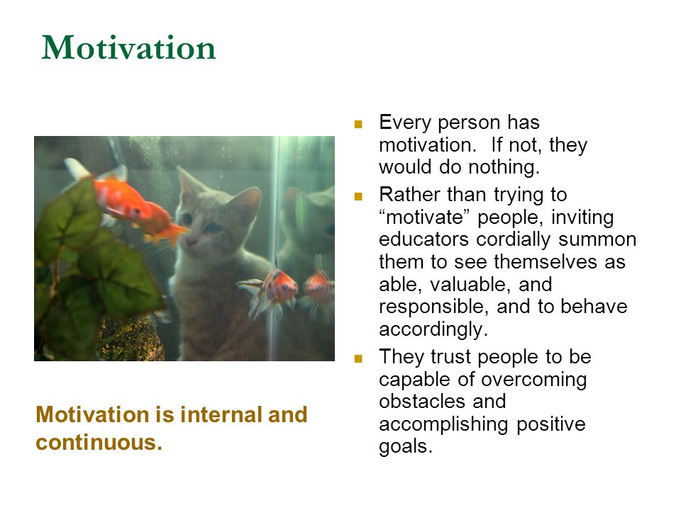 Motivation Motivation is internal and continuous.