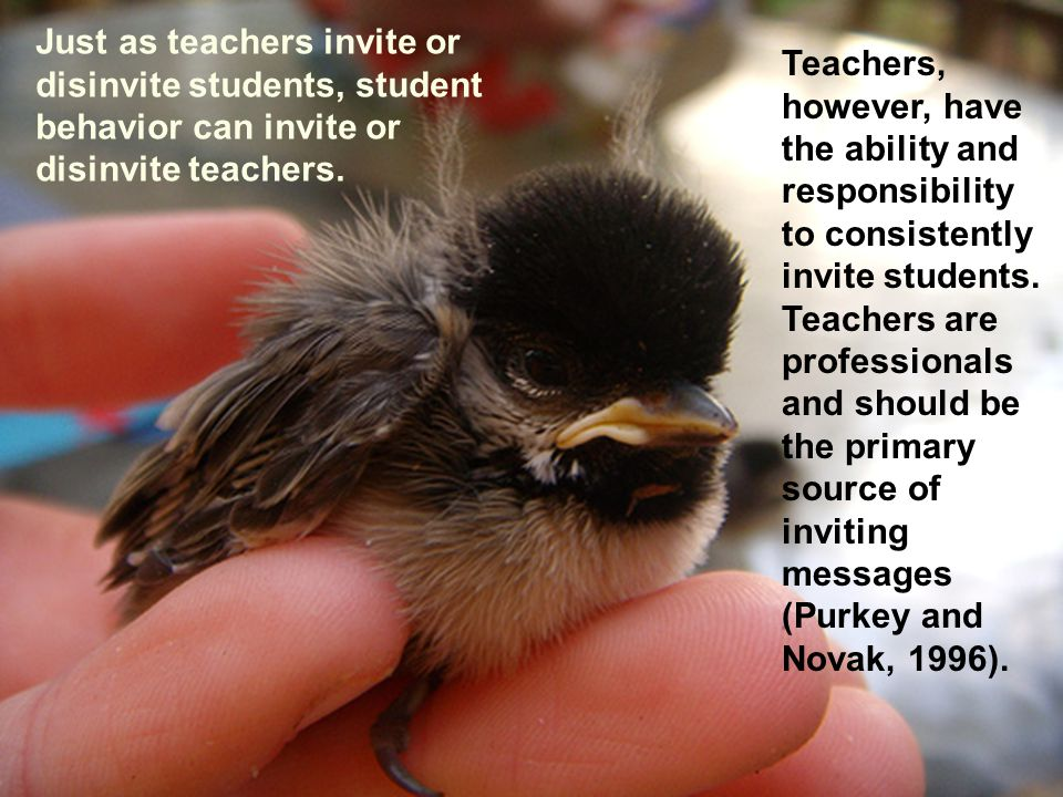Just as teachers invite or disinvite students, student behavior can invite or disinvite teachers.