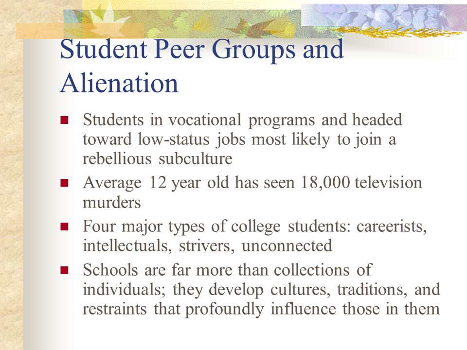 Student Peer Groups and Alienation
