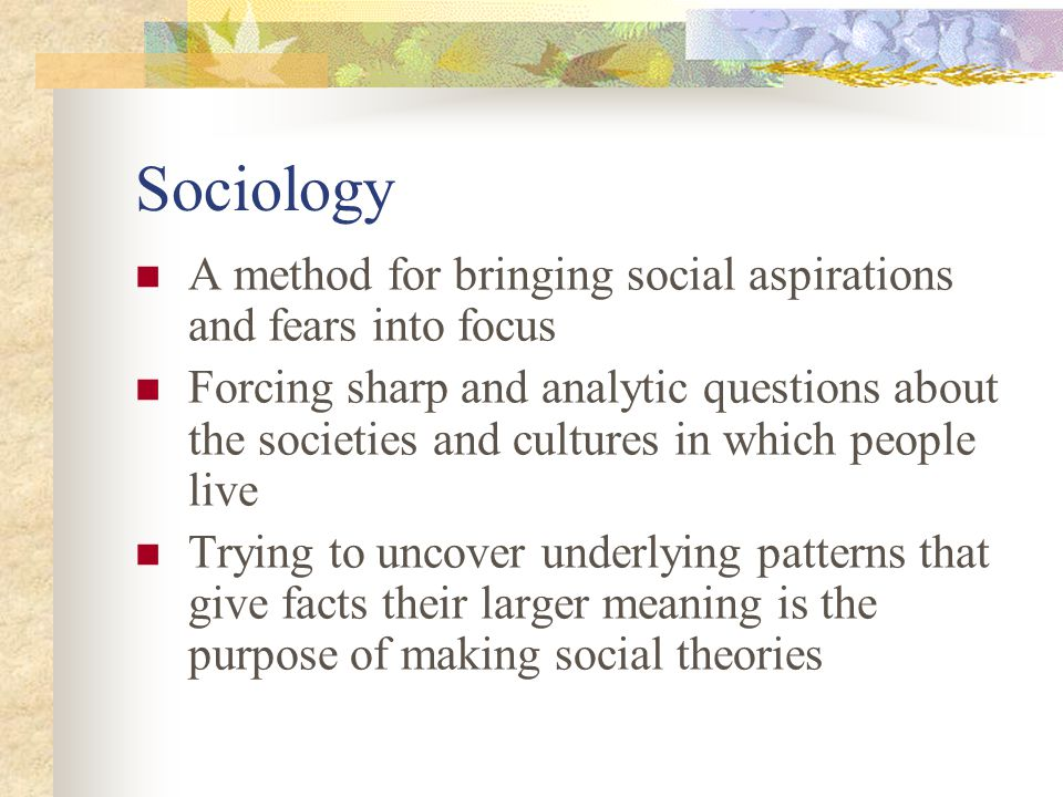 Sociology A method for bringing social aspirations and fears into focus.