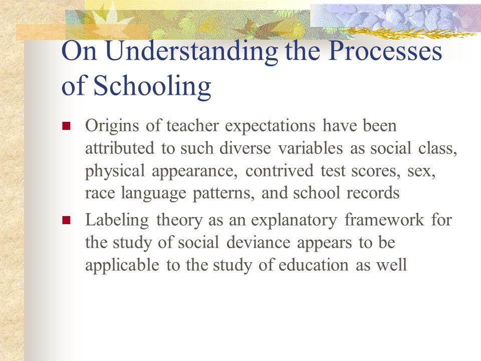 On Understanding the Processes of Schooling