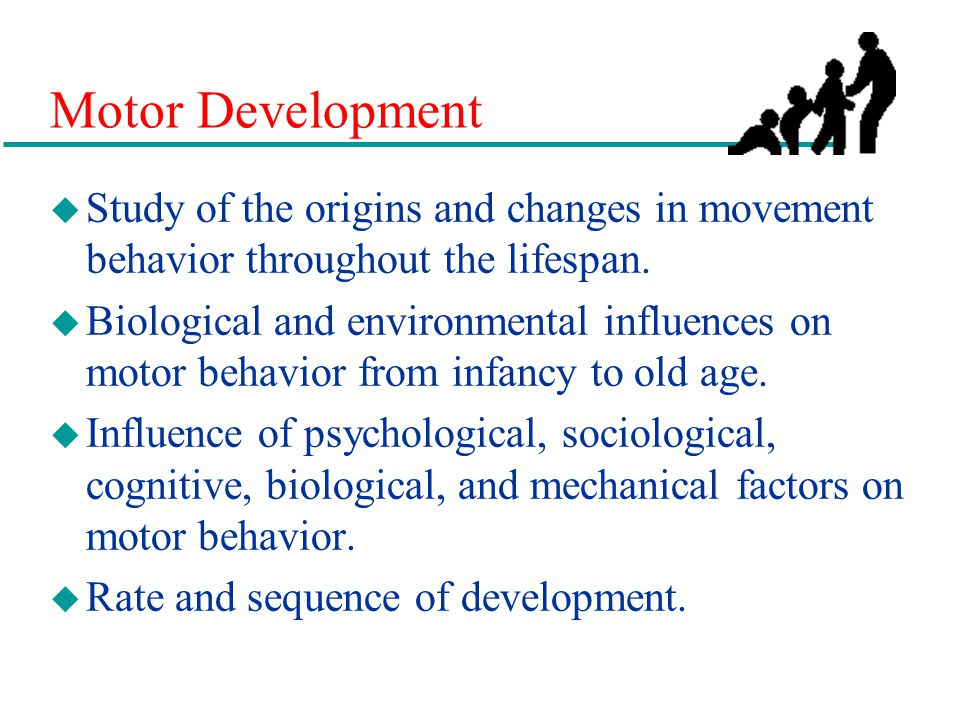 Motor Development Study of the origins and changes in movement behavior throughout the lifespan.