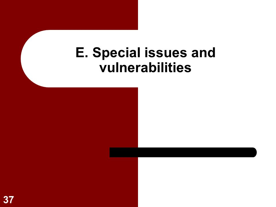 E. Special issues and vulnerabilities