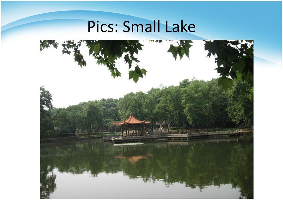 Pics: Small Lake