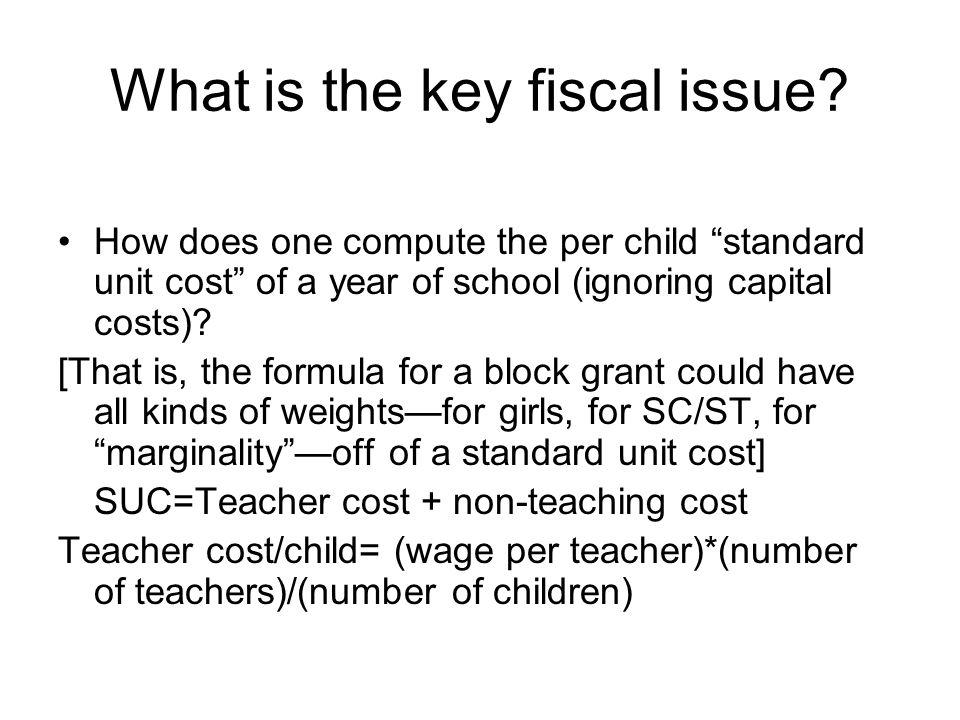 What is the key fiscal issue