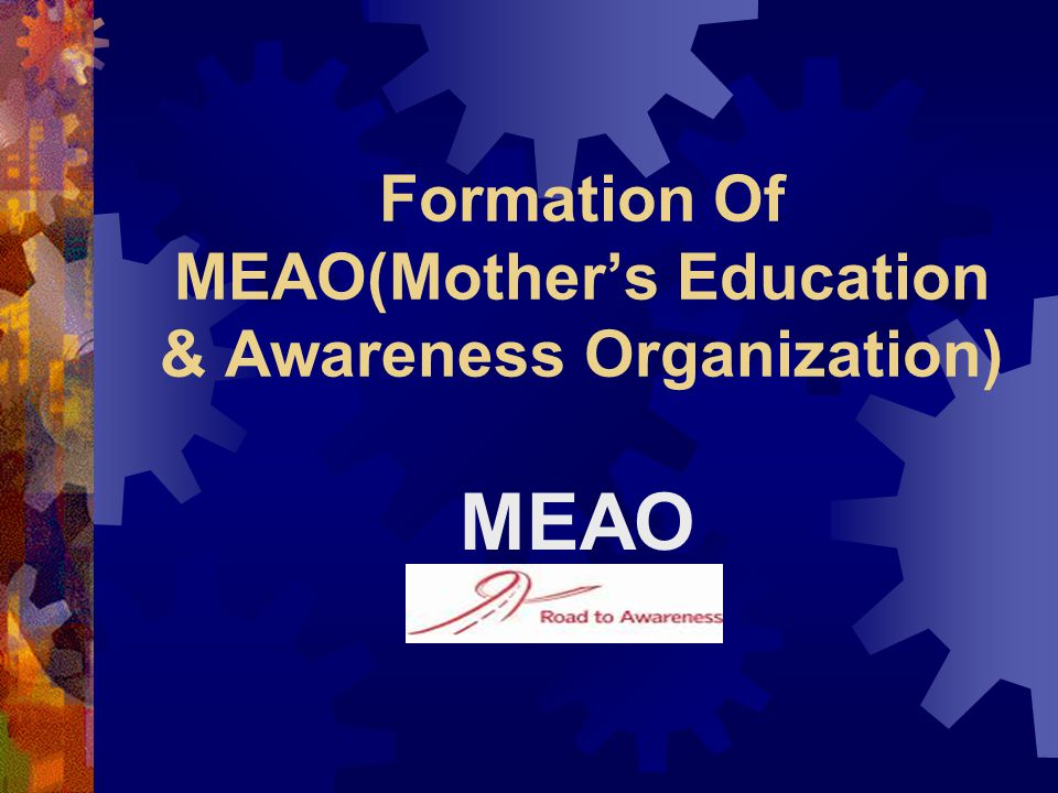 Formation Of MEAO(Mother's Education & Awareness Organization)