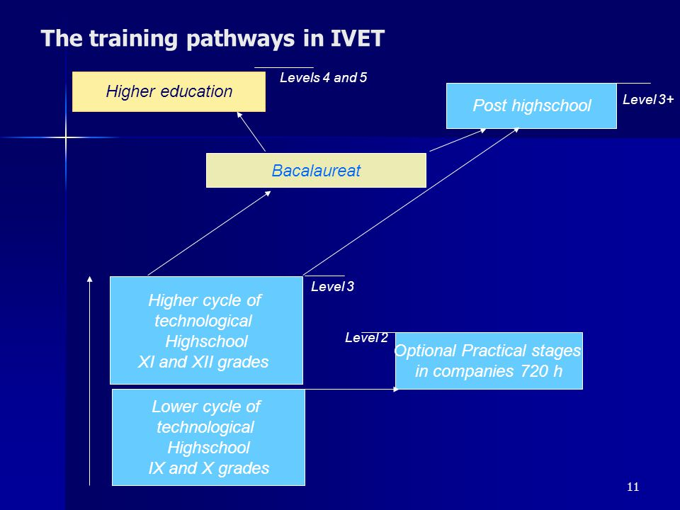 The training pathways in IVET