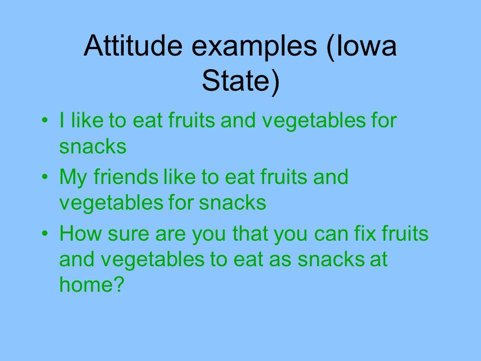 Attitude examples (Iowa State)