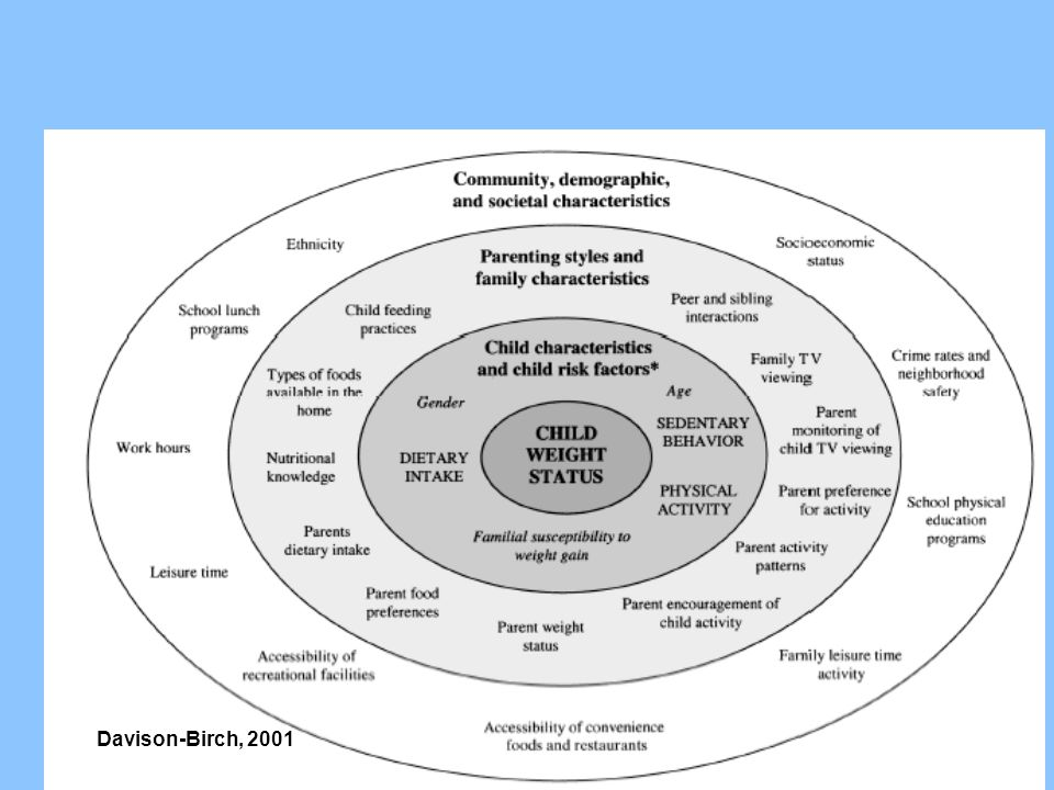 An Ecological Model Davison-Birch, 2001