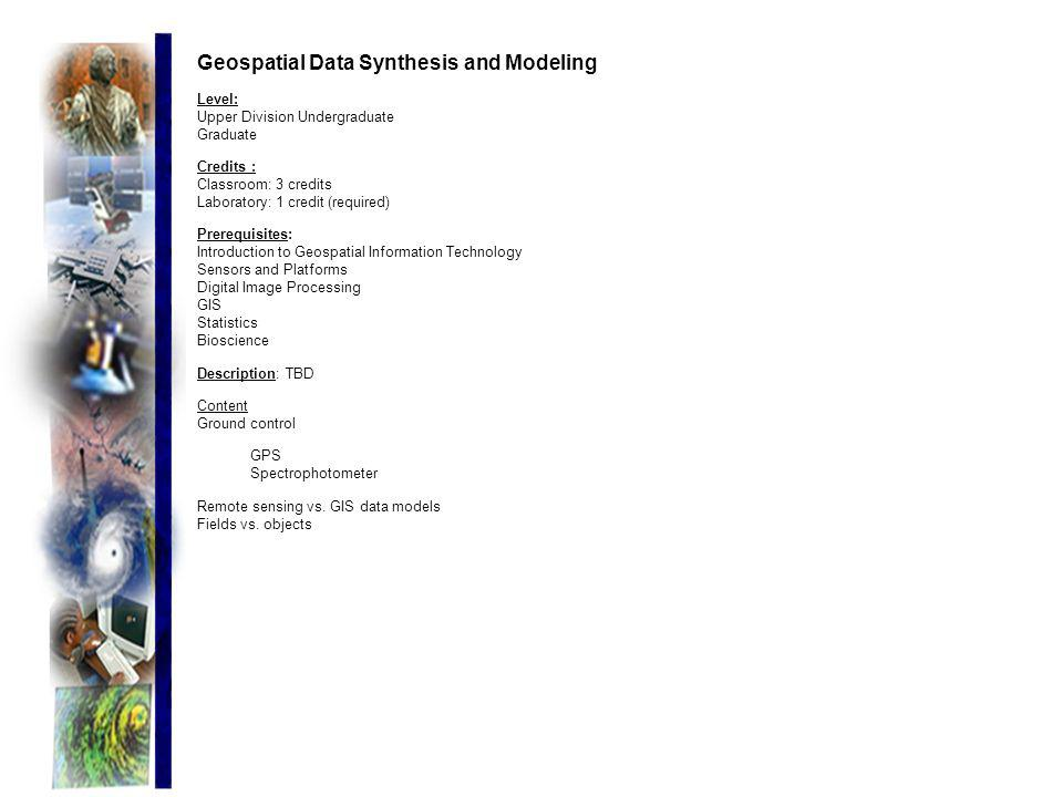 Geospatial Data Synthesis and Modeling