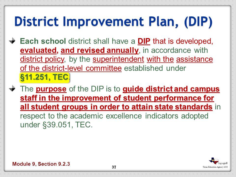 District Improvement Plan, (DIP)