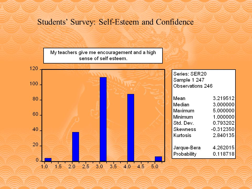 Students' Survey: Self-Esteem and Confidence