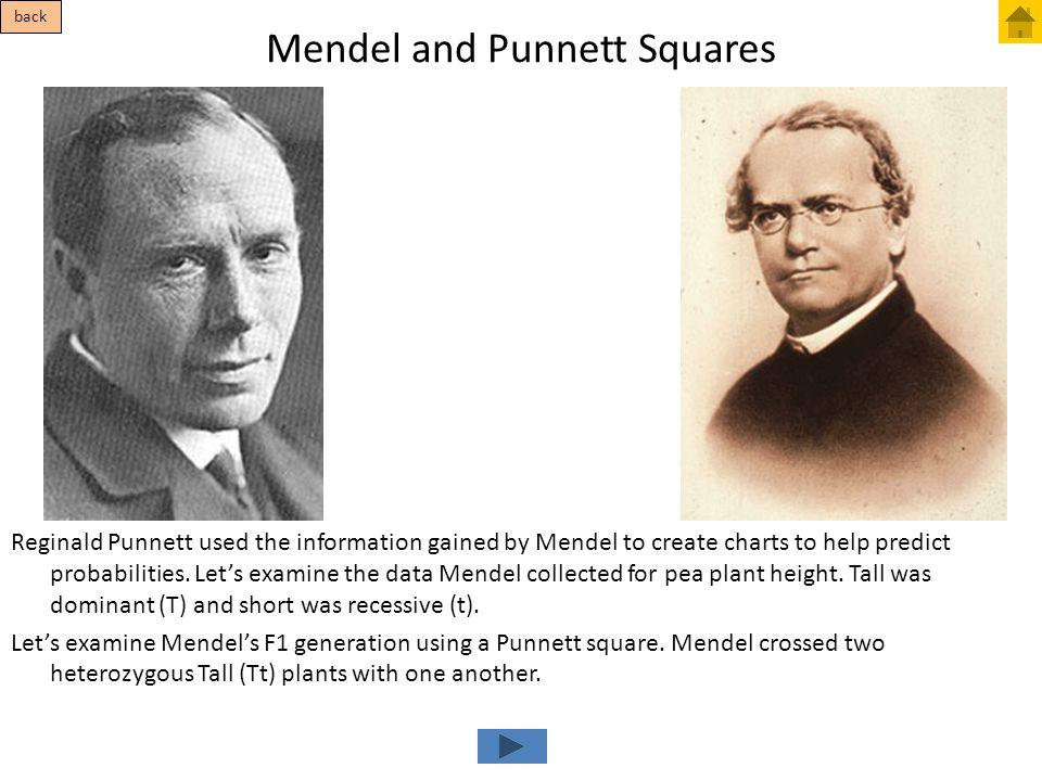 Mendel and Punnett Squares