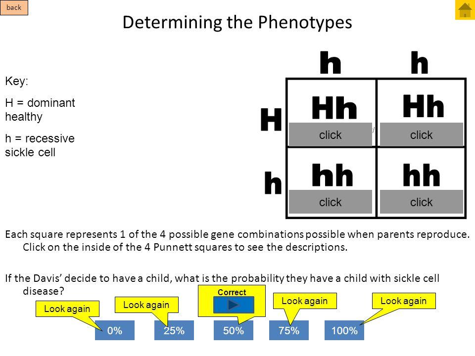 Determining the Phenotypes