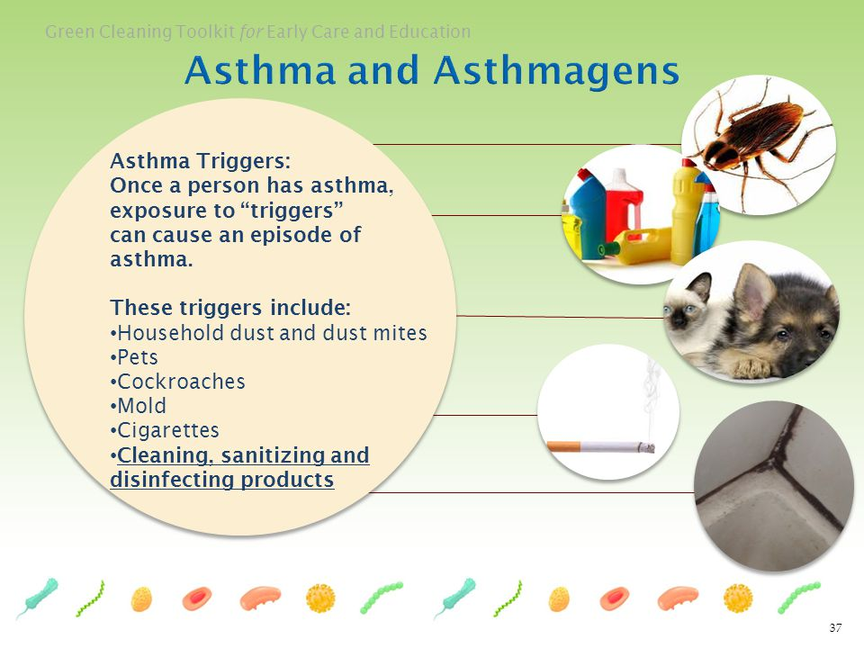 Asthma and Asthmagens Asthma Triggers: