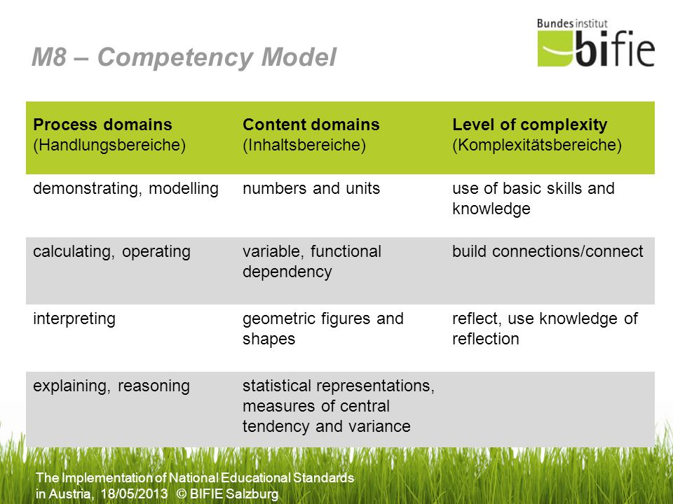 M8 – Competency Model Process domains (Handlungsbereiche)