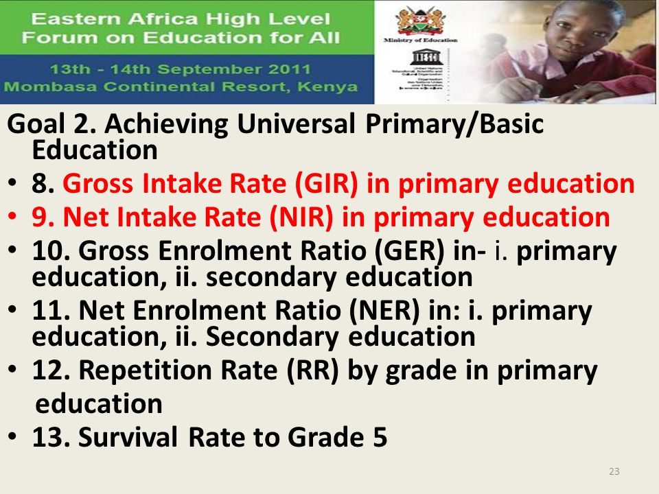 Goal 2. Achieving Universal Primary/Basic Education