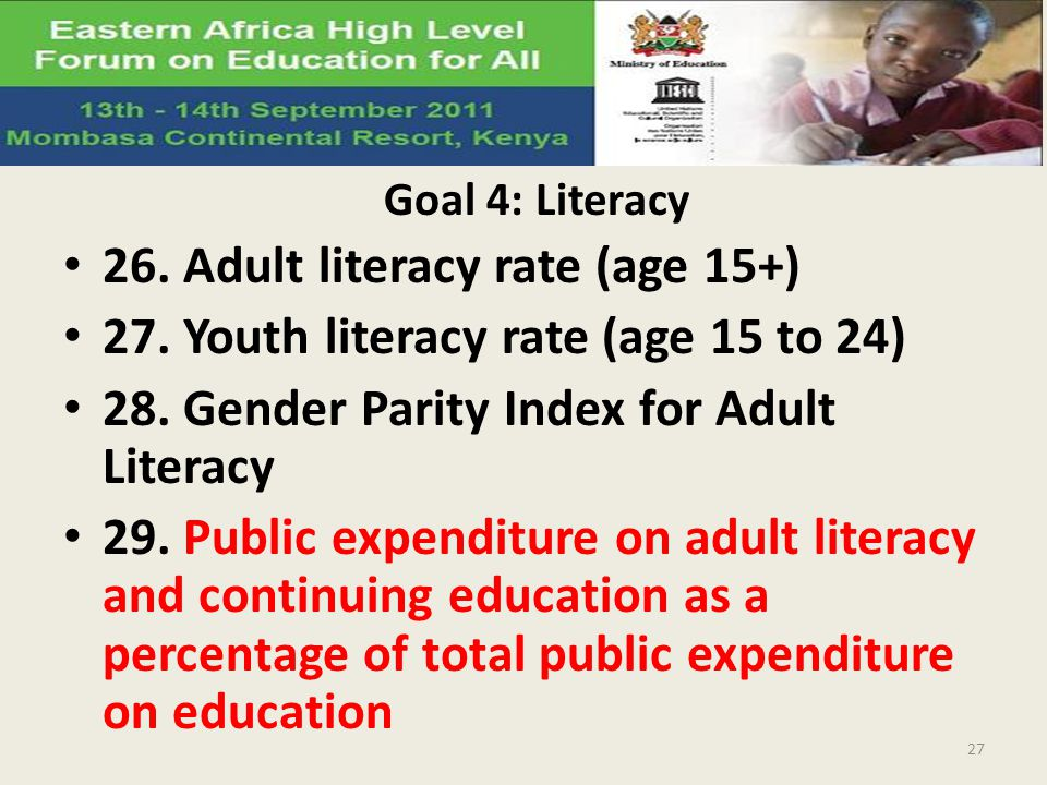 26. Adult literacy rate (age 15+)