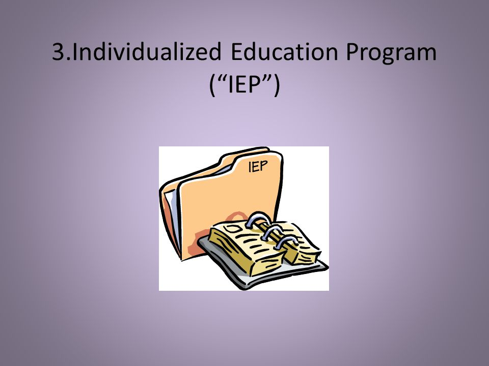 3.Individualized Education Program ( IEP )