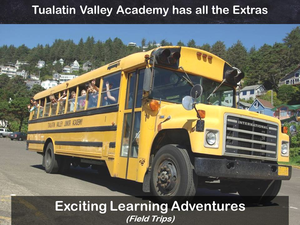 Exciting Learning Adventures (Field Trips)