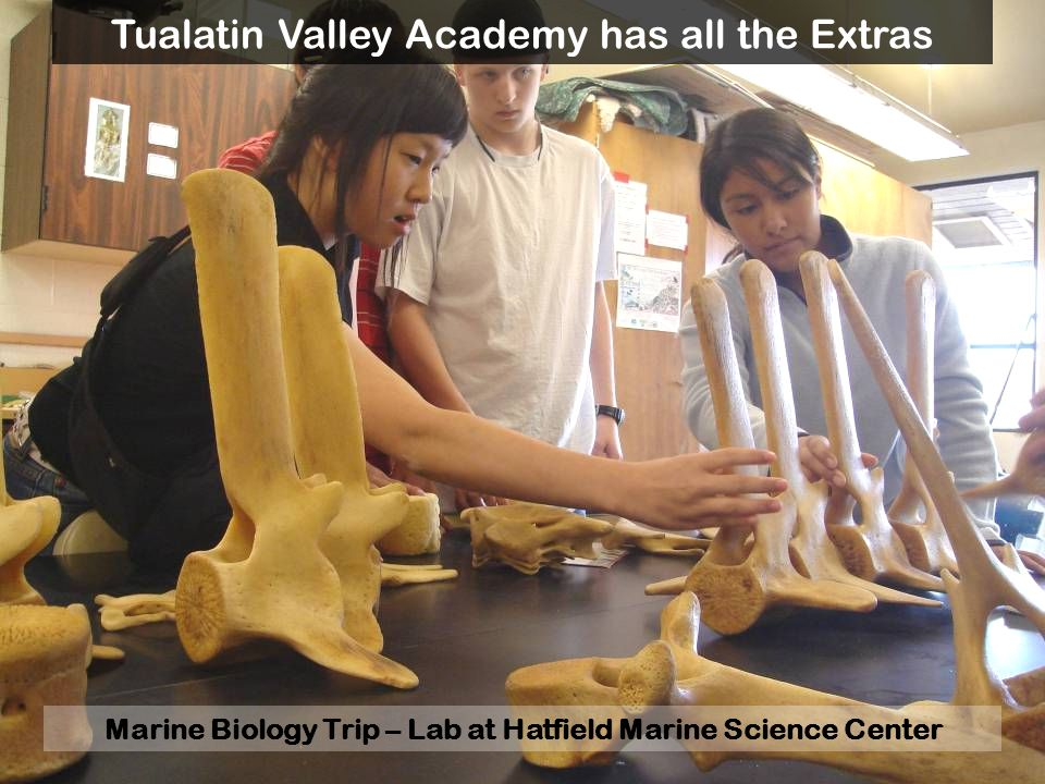 Marine Biology Trip – Lab at Hatfield Marine Science Center