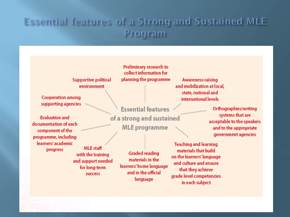 Essential features of a Strong and Sustained MLE Program