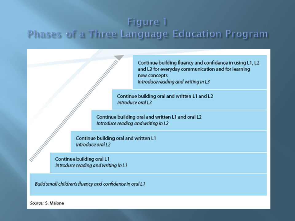 Figure 1 Phases of a Three Language Education Program