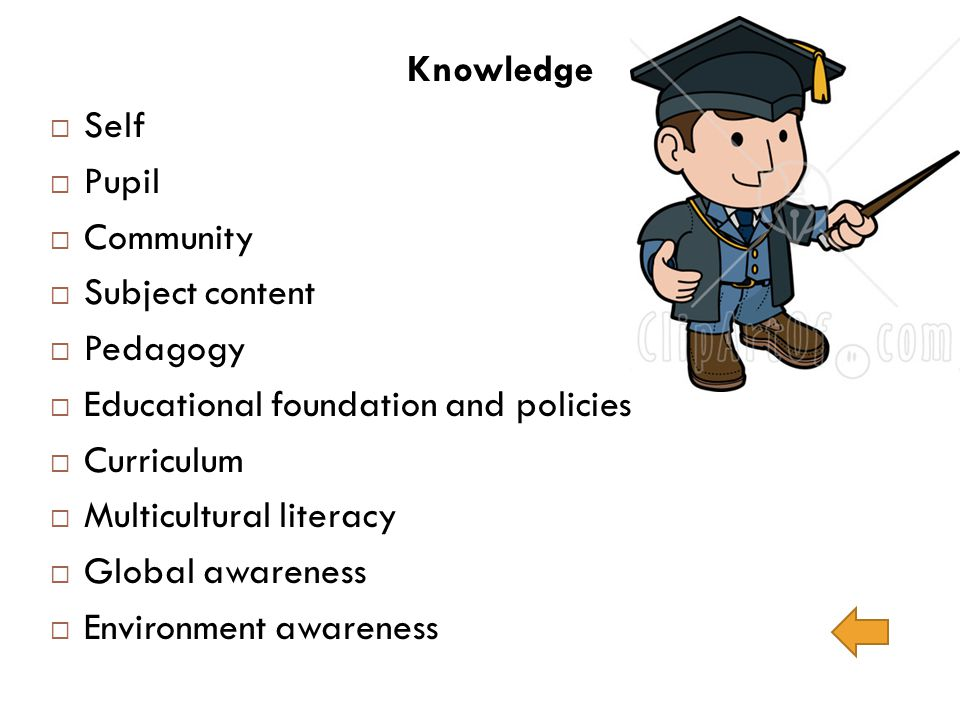 Knowledge Self. Pupil. Community. Subject content. Pedagogy. Educational foundation and policies.