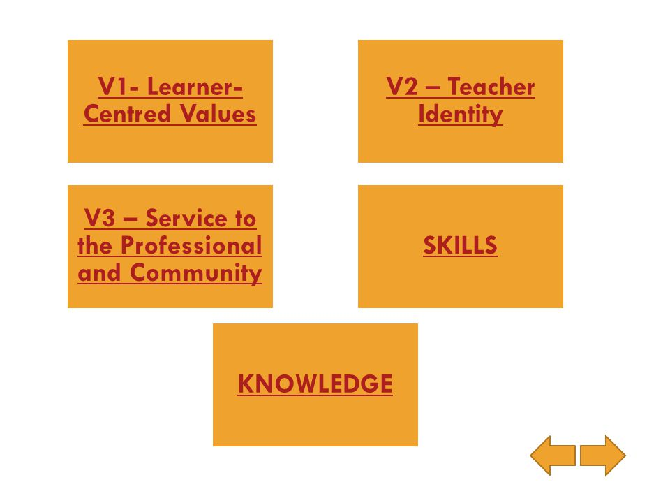 V1- Learner-Centred Values V2 – Teacher Identity