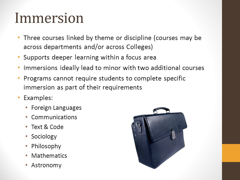 Immersion Three courses linked by theme or discipline (courses may be across departments and/or across Colleges)