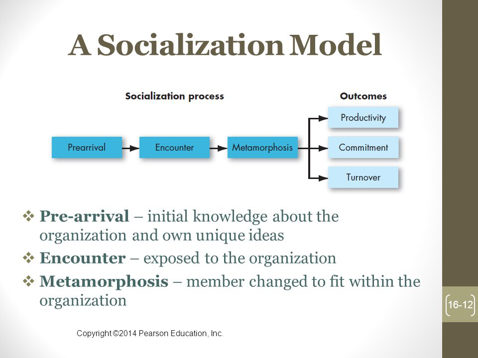 A Socialization Model Pre-arrival – initial knowledge about the organization and own unique ideas. Encounter – exposed to the organization.