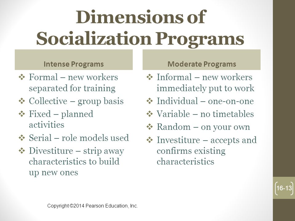 Dimensions of Socialization Programs