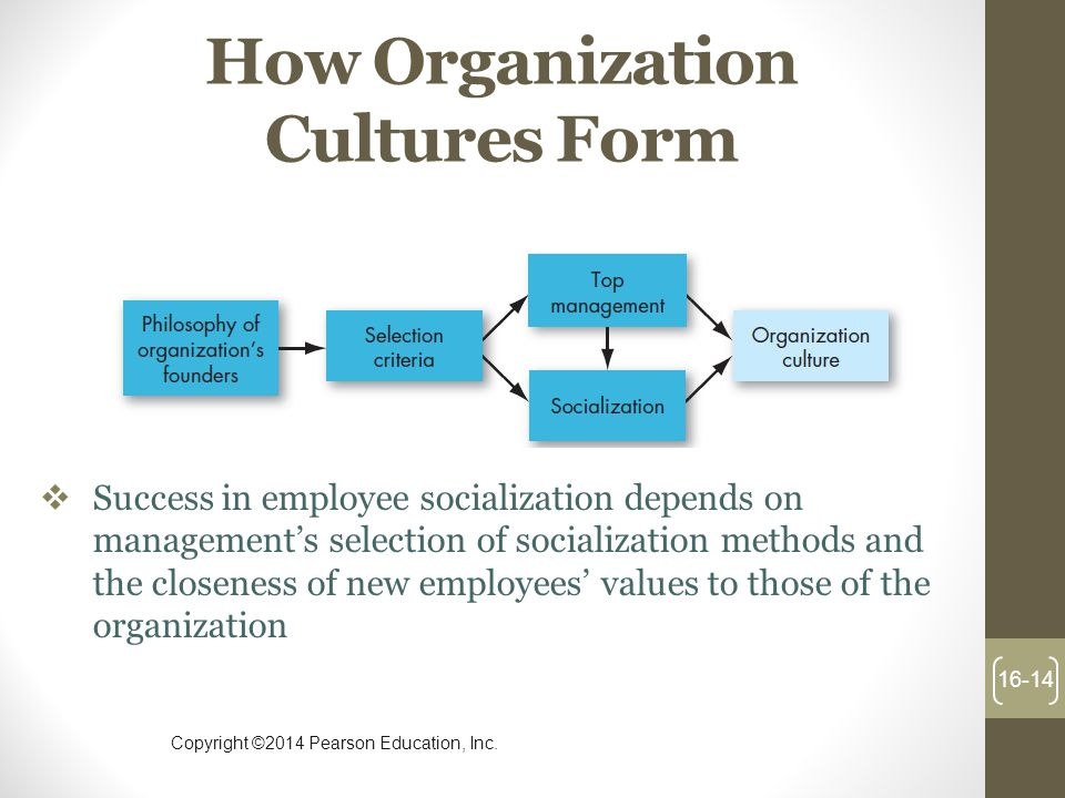 How Organization Cultures Form