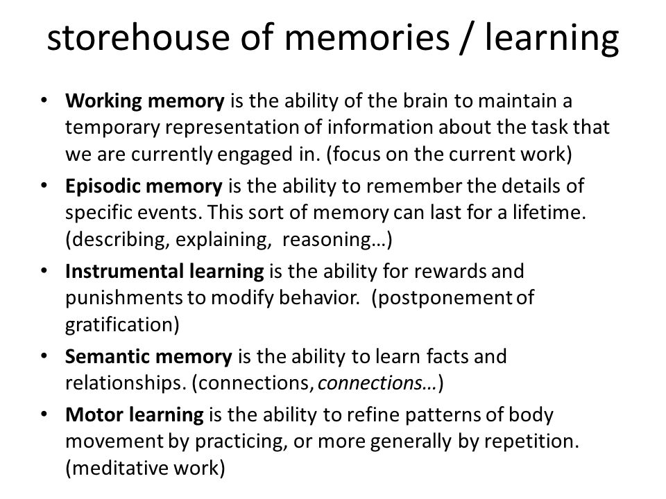 storehouse of memories / learning