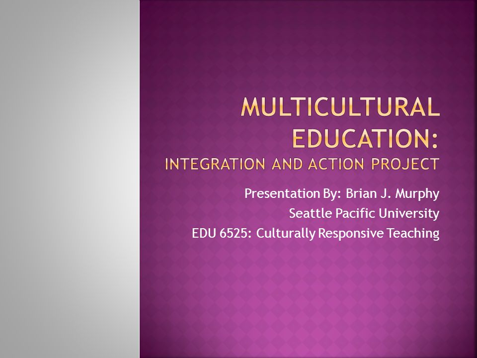 Multicultural Education: Integration and Action project
