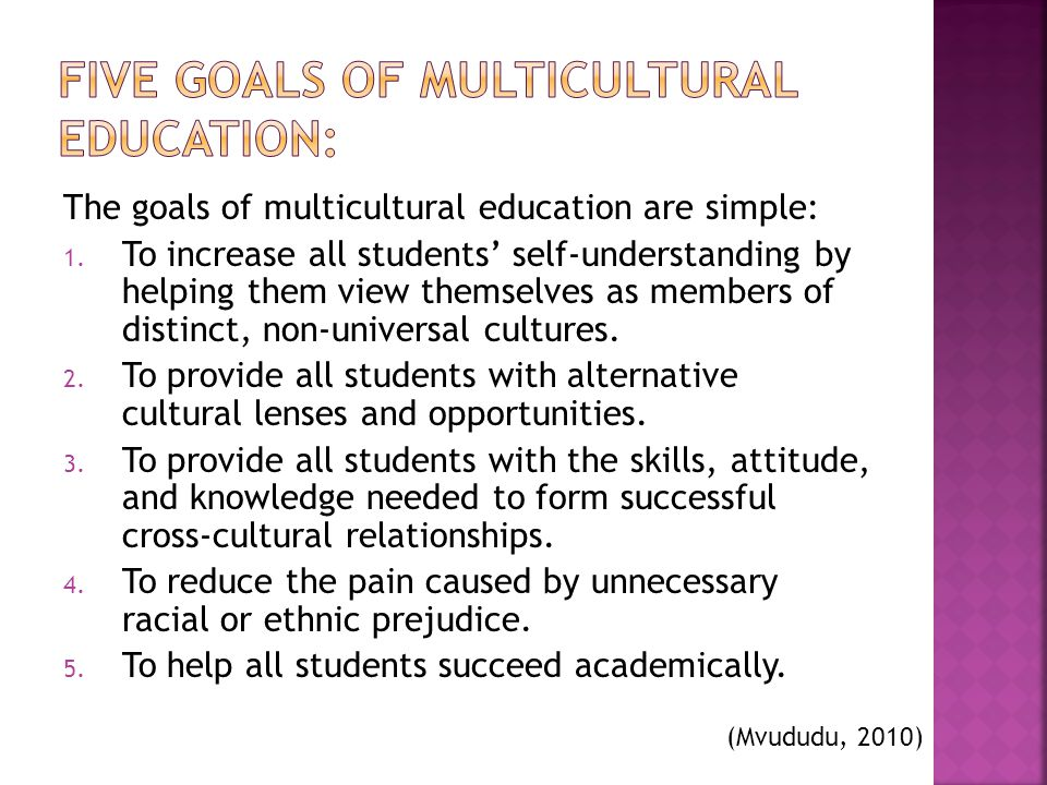 Five Goals of Multicultural Education: