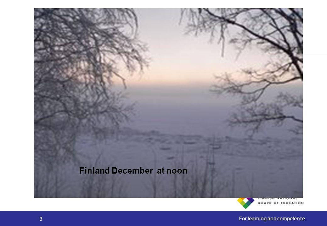 Finland December at noon