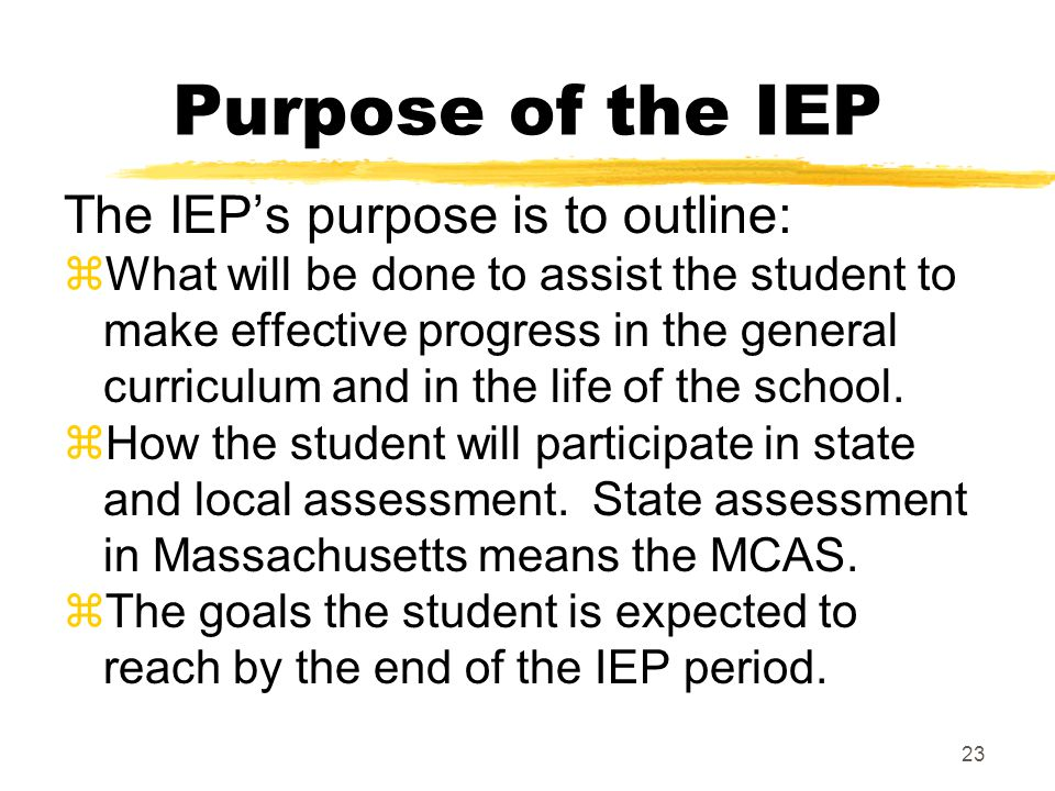 Purpose of the IEP The IEP's purpose is to outline: