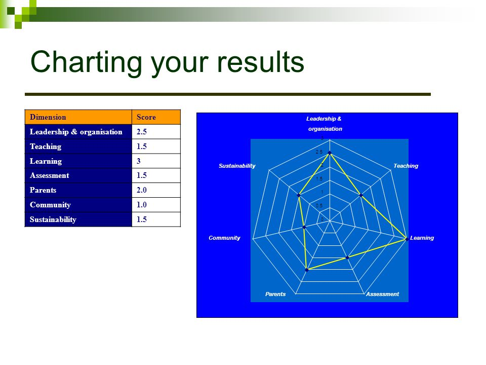 Charting your results Dimension Score Leadership & organisation 2.5