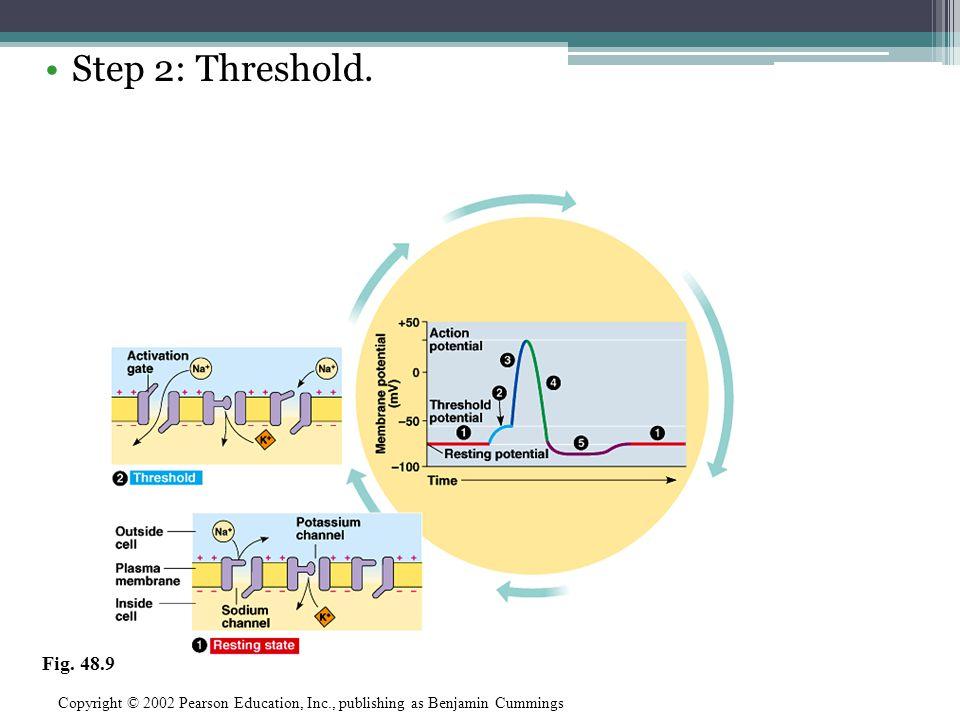 Step 2: Threshold. Fig. 48.9.