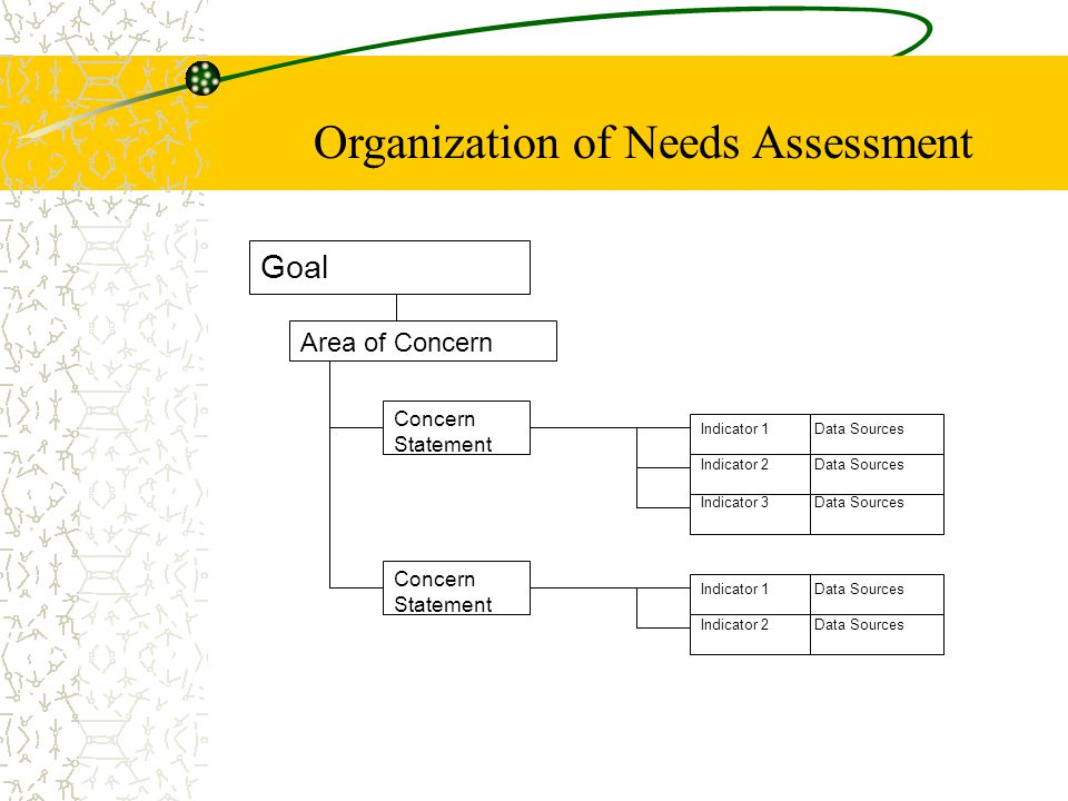 Organization of Needs Assessment