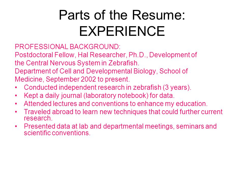 Parts of the Resume: EXPERIENCE