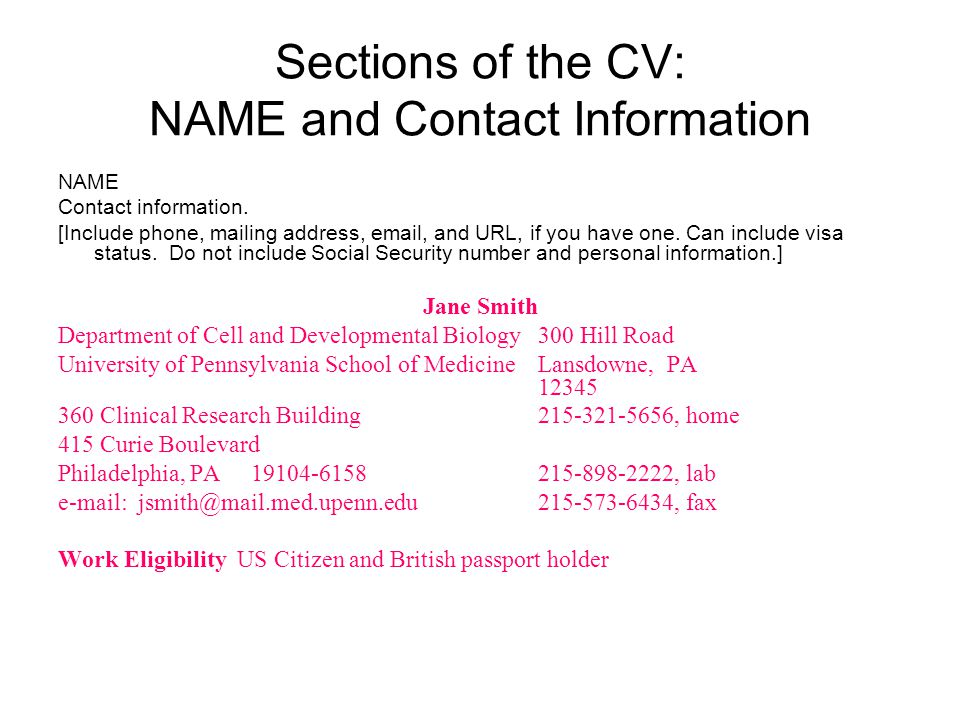 Sections of the CV: NAME and Contact Information NAME. Contact information.