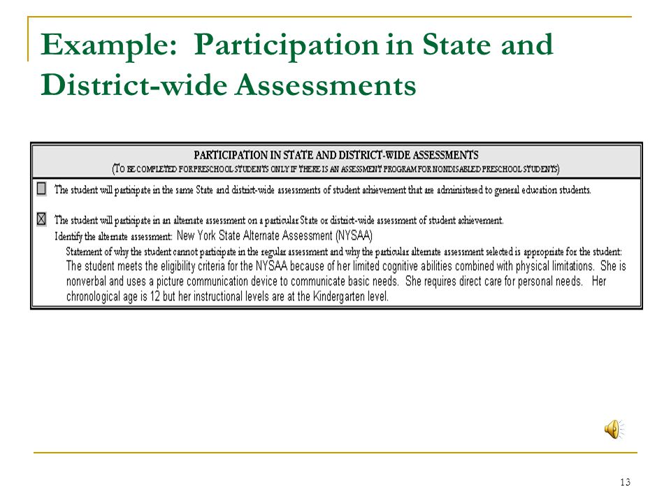 Example: Participation in State and District-wide Assessments