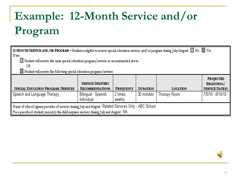 Example: 12-Month Service and/or Program