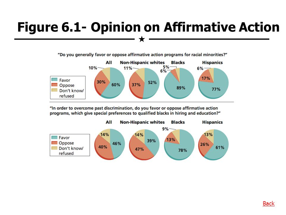 Figure 6.1- Opinion on Affirmative Action