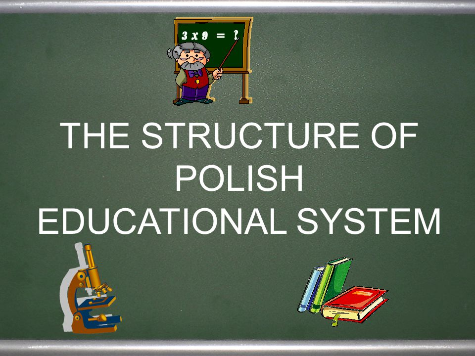 THE STRUCTURE OF POLISH